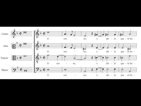 Cipriano de Rore: O sonno - Daedalus